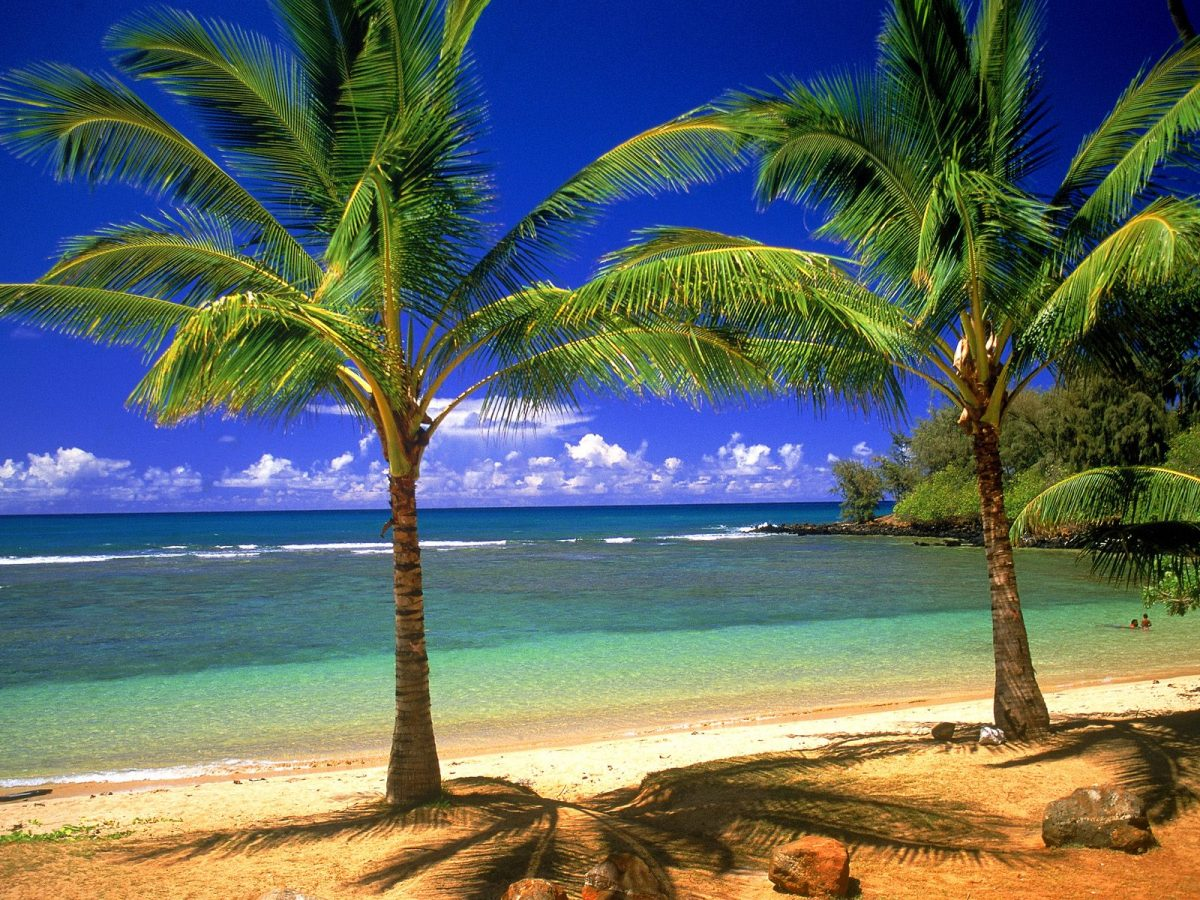hawaii-tropical-beache-lagoon